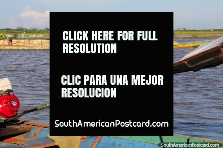 Barco de río lleno de plátanos recién cortados, Río Ucayali, Pucallpa. (720x480px). Perú, Sudamerica.
