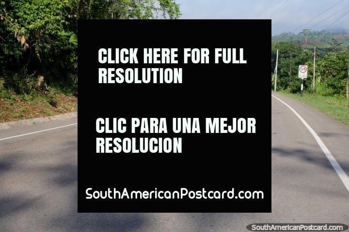 On the road from Pucallpa to Tingo Maria, around San Alejandro. (720x480px). Peru, South America.