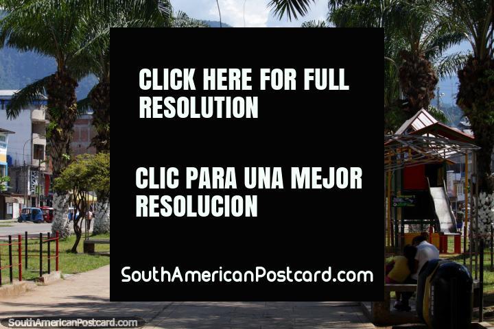 Parque en el centro de Tingo María, palmeras y colinas. (720x480px). Perú, Sudamerica.