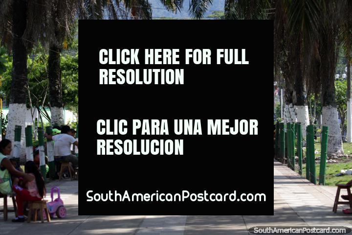 Parque, palmeiras e luzes, uma bela parte da cidade em Tingo Maria. (720x480px). Peru, América do Sul.