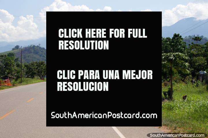 Esticamentos longos de caminho, visões bonitas, razoavelmente seguras, Tingo a Tocache. (720x480px). Peru, América do Sul.