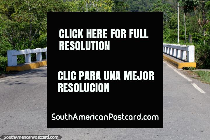 Lance uma ponte sobre um rio em volta de Aucayacu - a cidade de 3 rios. (720x480px). Peru, América do Sul.