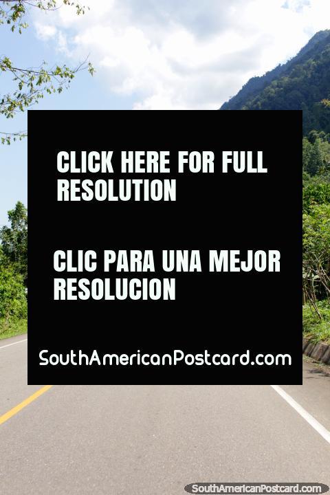 Dirigindo pelo Amazônia, Tingo Maria a Tocache em um caminho selado. (480x720px). Peru, América do Sul.