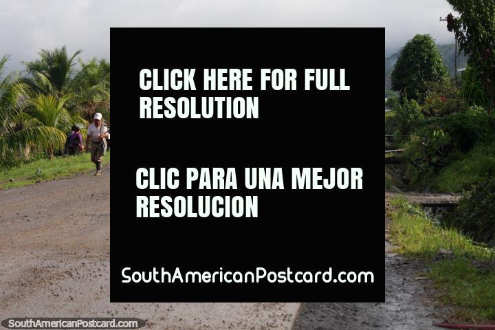 Nuevo San Martin, community north of Pizana, the Tingo Maria to Tarapoto road. (720x480px). Peru, South America.