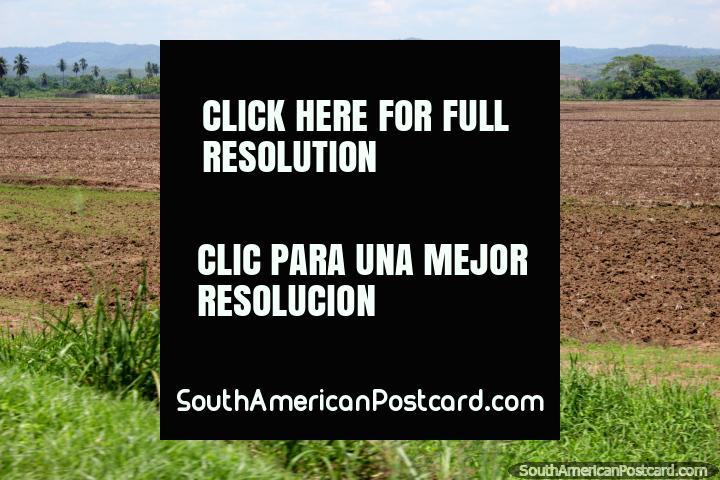 Campos arados listos para ser plantados con cultivos, campo abierto al sur de Tarapoto. (720x480px). Perú, Sudamerica.