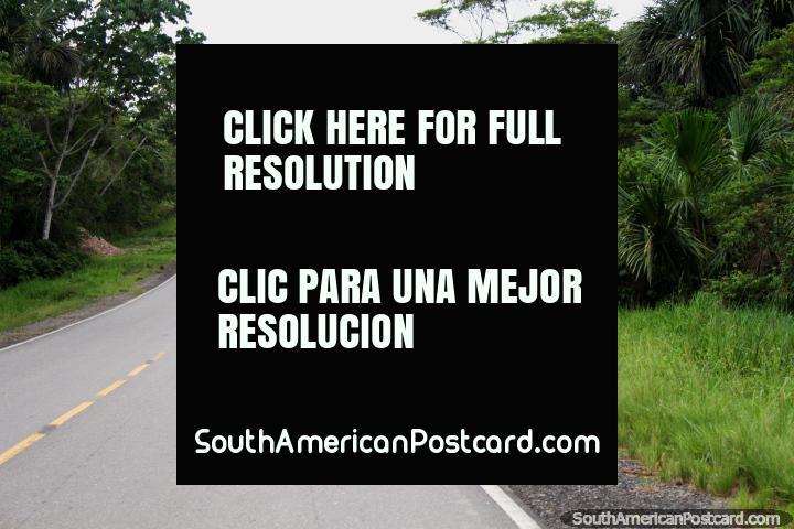O esticamento último do caminho no Nordeste peruano corre de Tarapoto a Yurimaguas. (720x480px). Peru, América do Sul.