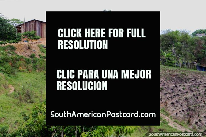 Wooden house and property south of Yurimaguas, country living. (720x480px). Peru, South America.