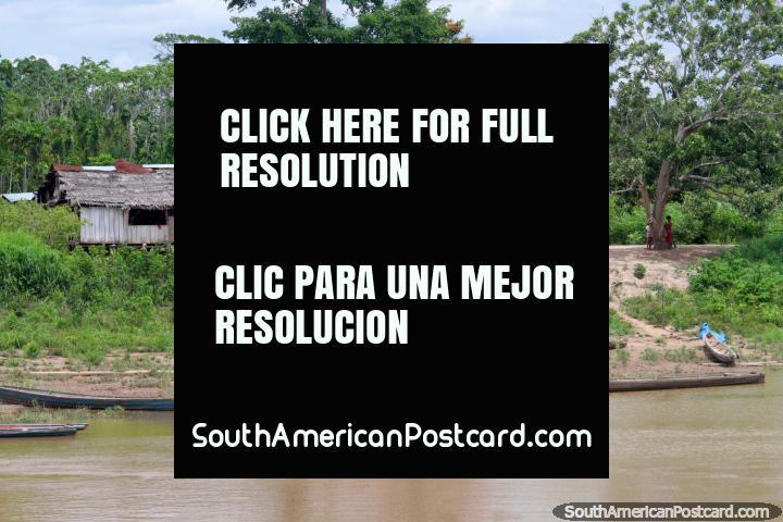 Casas en el lado del río en Santa Cruz, a medio camino entre Yurimaguas y Lagunas, 4 horas y media al norte de Yurimaguas. (720x480px). Perú, Sudamerica.