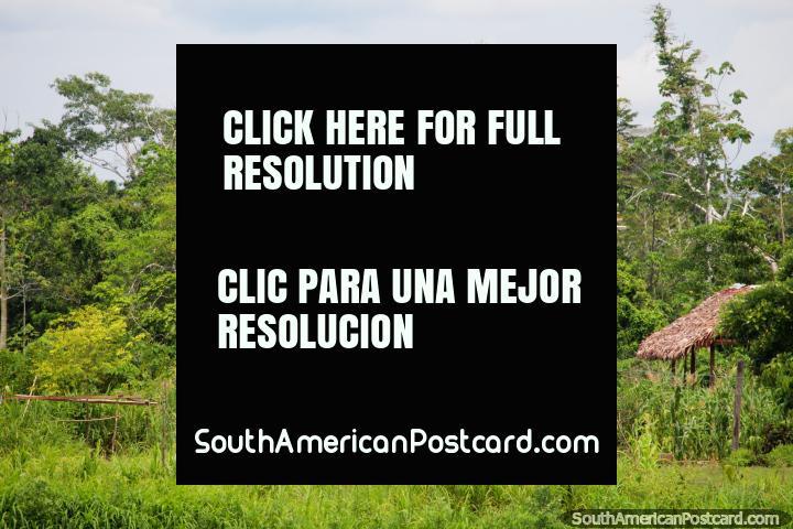 As portas e as janelas são um anexo desnecessário a casas de Amazônia, Distrito de Santa Cruz. (720x480px). Peru, América do Sul.