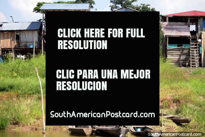 Houses built on stilts because the Amazon River rises during rainy season, Caballococha. (720x480px). Peru, South America.