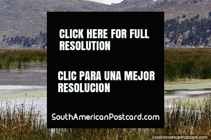 O homem rema em um pequeno barco procurando um lugar de pesca nas águas do Lago Titicaca em Puno. (720x480px). Peru, América do Sul.