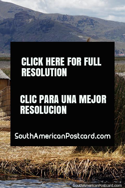 As pessoas Uros vivem no mar alto de Puno em ilhas de cana flutuam no alojamento coberto com palha. (480x720px). Peru, América do Sul.
