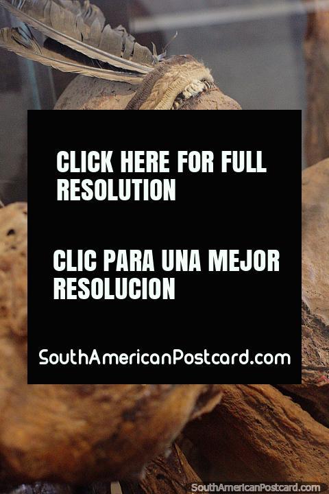 Mummies, the great treasure of Sillustani, servants discovered in 1971, Carlos Dreyer Museum, Puno. (480x720px). Peru, South America.