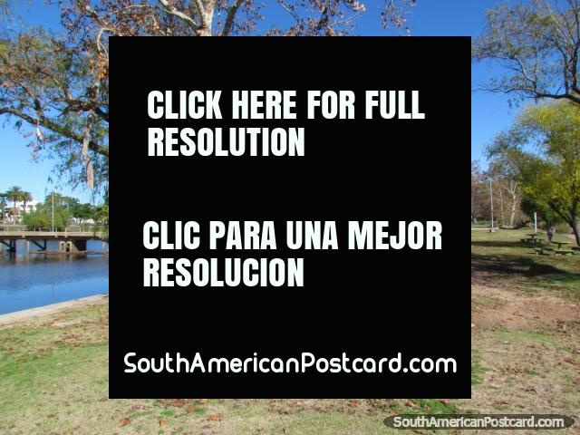 Beautiful park area and trees on Port Island beside the river in Mercedes. (640x480px). Uruguay, South America.