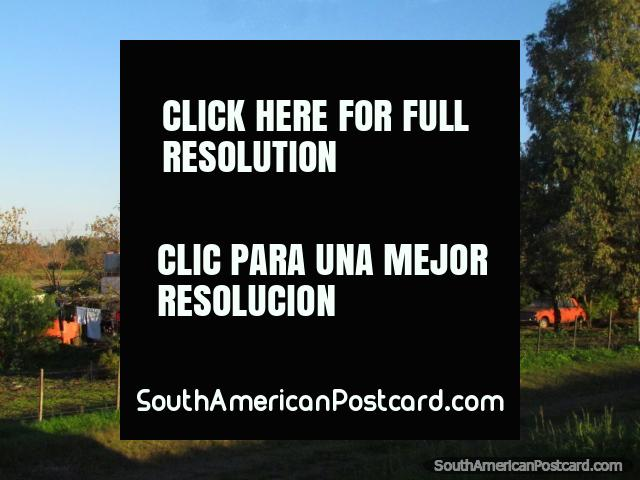 A country house and property between Dolores and Palmira. (640x480px). Uruguay, South America.