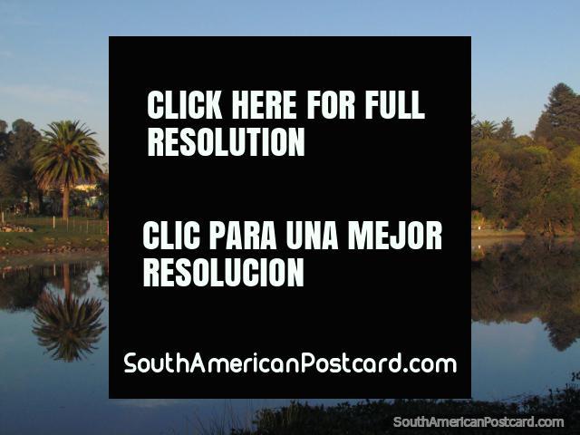 Beside the river 'Arroyo de las Vacas' in Carmelo. (640x480px). Uruguay, South America.