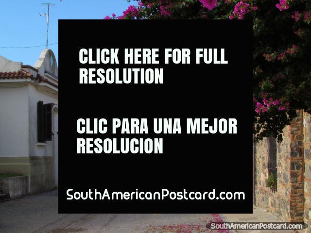 Looking along Calle de San Pedro in Colonia del Sacramento. (640x480px). Uruguay, South America.
