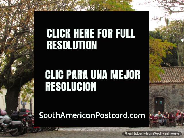 Restaurants on the cobblestones under leafy trees, Colonia del Sacramento. (640x480px). Uruguay, South America.