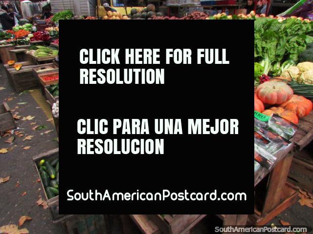 Fresh vegetables at La Feria Tristan Narvaja markets in Montevideo. (640x480px). Uruguay, South America.