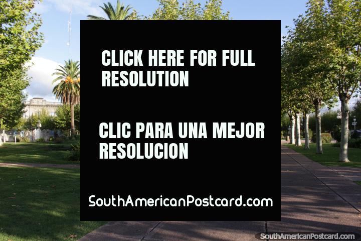 The leafy central plaza in Fray Bentos - Plaza Constitucion. (720x480px). Uruguay, South America.