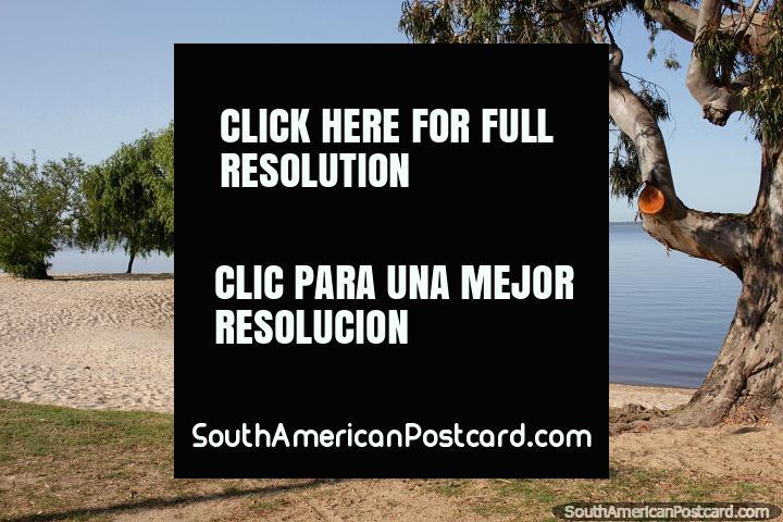 Carmelo has a very pretty river beach close to the city. (720x480px). Uruguay, South America.