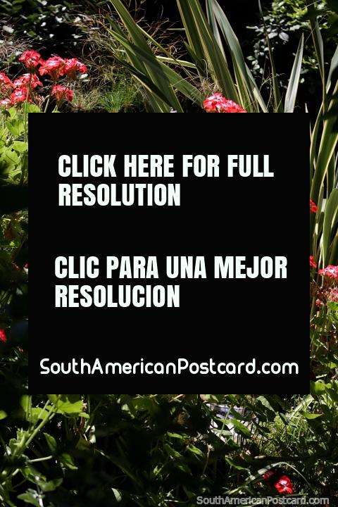 Fuente de cerámica en jardines rodeados de flores y plantas en Colonia. (480x720px). Uruguay, Sudamerica.