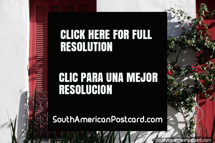 Contraventanas de madera con barrera de hierro, las flores crecen en el frente de esta hermosa casa en Montevideo. (720x480px). Uruguay, Sudamerica.