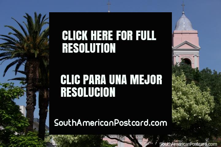 Beautiful trees, palms and cathedral at Plaza San Fernando in Maldonado. (720x480px). Uruguay, South America.