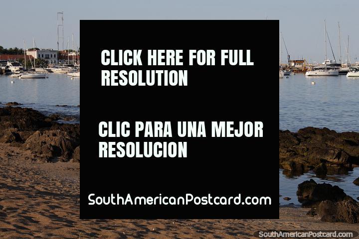 Yacht marina on the calm side (Mansa Beach area) in Punta del Este. (720x480px). Uruguay, South America.