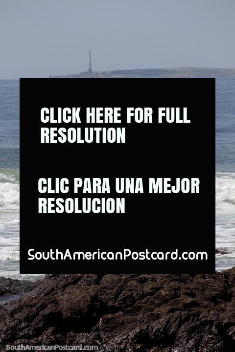 Sea birds on the rocks and the distant lighthouse on the point of Punta del Este. (480x720px). Uruguay, South America.