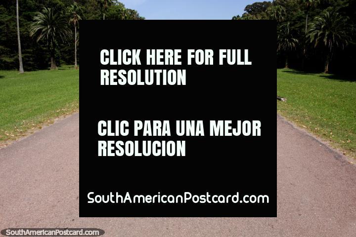 Best way to see Santa Teresa National Park is by car or bicycle, the road is long, Punta del Diablo. (720x480px). Uruguay, South America.