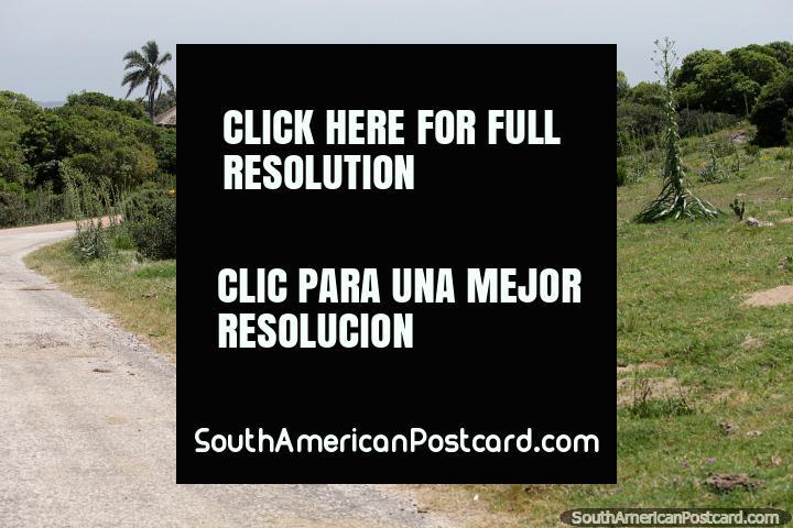 Take a drive around Santa Teresa National Park, enjoy nature, beaches and the fort, Punta del Diablo. (720x480px). Uruguay, South America.