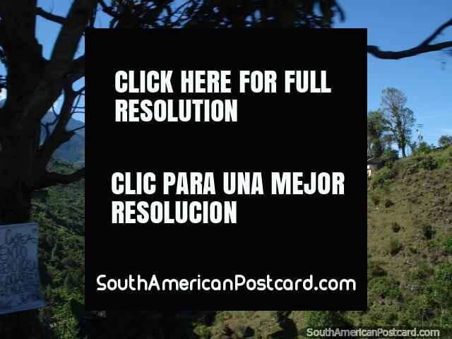Vista de las colinas verdes viajando en la carretera de Transandina de Mérida. (640x480px). Venezuela, Sudamerica.