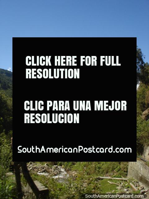 Dirigir nas terras altas de Mérida é muito relaxante em um dia agradável. (480x640px). Venezuela, América do Sul.