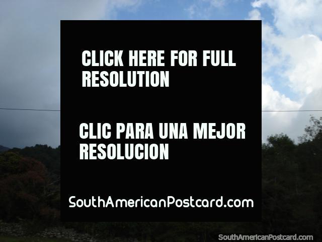 Voar horizontal no trapézio nos jardins botânicos em Mérida. (640x480px). Venezuela, América do Sul.