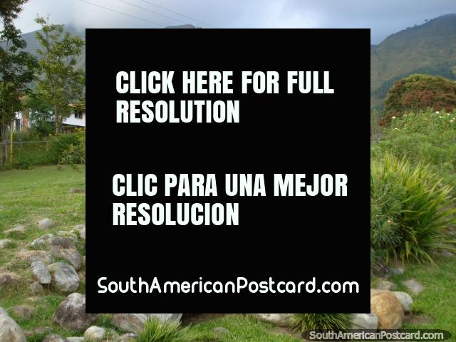 Un lugar agradable de naturaleza y tranquilidad, plantas y rocas en los jardines botánicos de Mérida. (640x480px). Venezuela, Sudamerica.