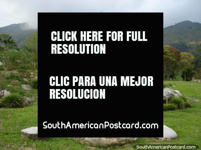 El aliento el aire chulo fresco y disfruta de las vistas de las colinas y verde en los jardines botánicos de Mérida. (640x480px). Venezuela, Sudamerica.