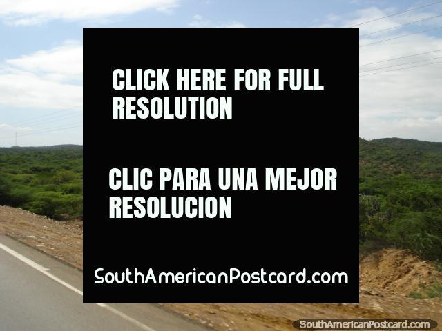 Green terrain beside the road to Coro from Maracaibo. (640x480px). Venezuela, South America.