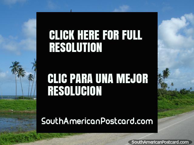 Visões bonitas da costa do norte entre Tucacas e Moron. (640x480px). Venezuela, América do Sul.