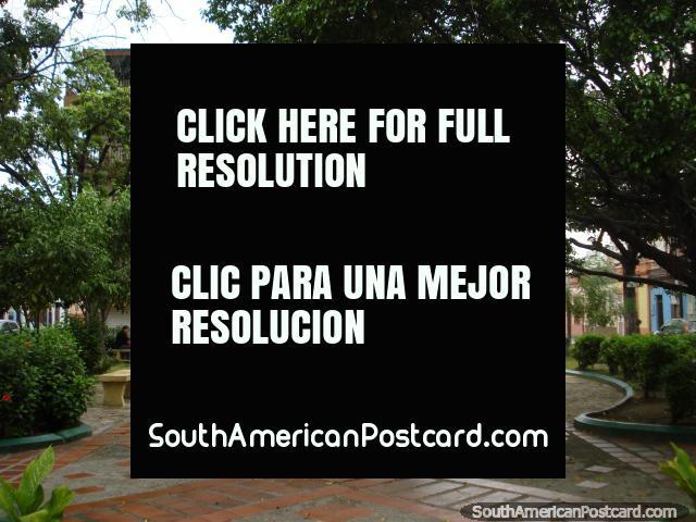 Pequeño parque agradable con árboles en Puerto Cabello central. (640x480px). Venezuela, Sudamerica.