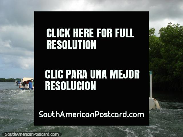 Traveling across Laguna La Restinga on Isla Margarita by boat. (640x480px). Venezuela, South America.