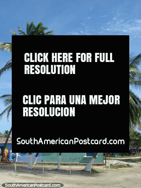 Palms and shops at La Restinga lagoon, a popular place to visit on Isla Margarita. (480x640px). Venezuela, South America.