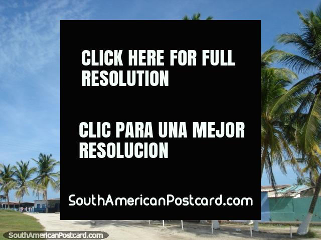 Palm trees and the shop greet visitors to La Restinga on Isla Margarita. (640x480px). Venezuela, South America.