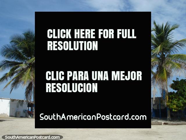 The outdoor restaurants beside the beach at La Restinga on Isla Margarita. (640x480px). Venezuela, South America.