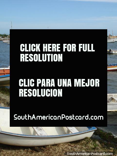 La bahía de pesca tranquila y muchos barcos de Boca de Rio, Isla Margarita. (480x640px). Venezuela, Sudamerica.