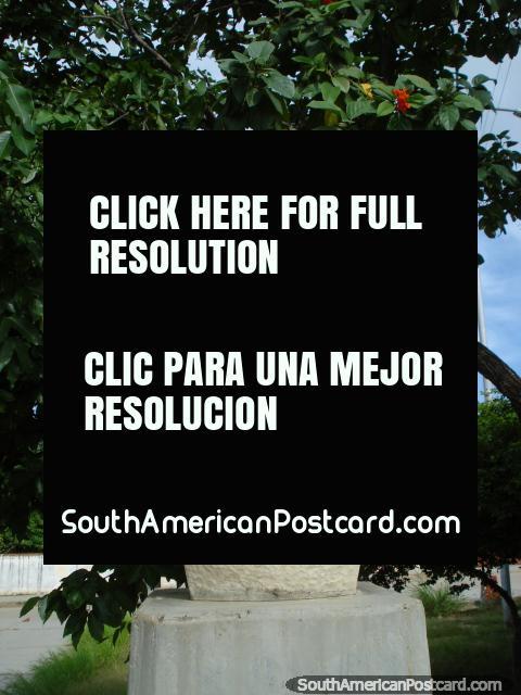 En Robledal oeste lejano en Isla Margarita, plaza y monumento a Antonio Jose de Sucre (1795-1830), líder de independencia. (480x640px). Venezuela, Sudamerica.