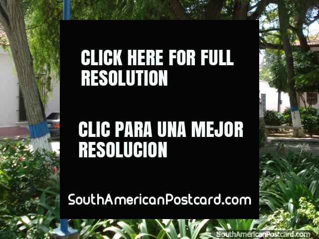 Park in Pampatar near the castle on Isla Margarita. (640x480px). Venezuela, South America.