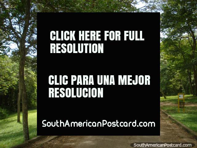 Belos passeios no parque em Parque Cachamay em Cidade Guayana. (640x480px). Venezuela, América do Sul.