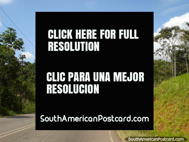 The road out of Santa Elena to the Brazilian border. (640x480px). Venezuela, South America.