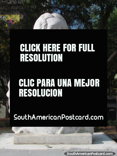 Busto de Graciela Rincon Calcano (1904-1987), foi poeta e contador de histórias, Maracaibo. (480x640px). Venezuela, América do Sul.